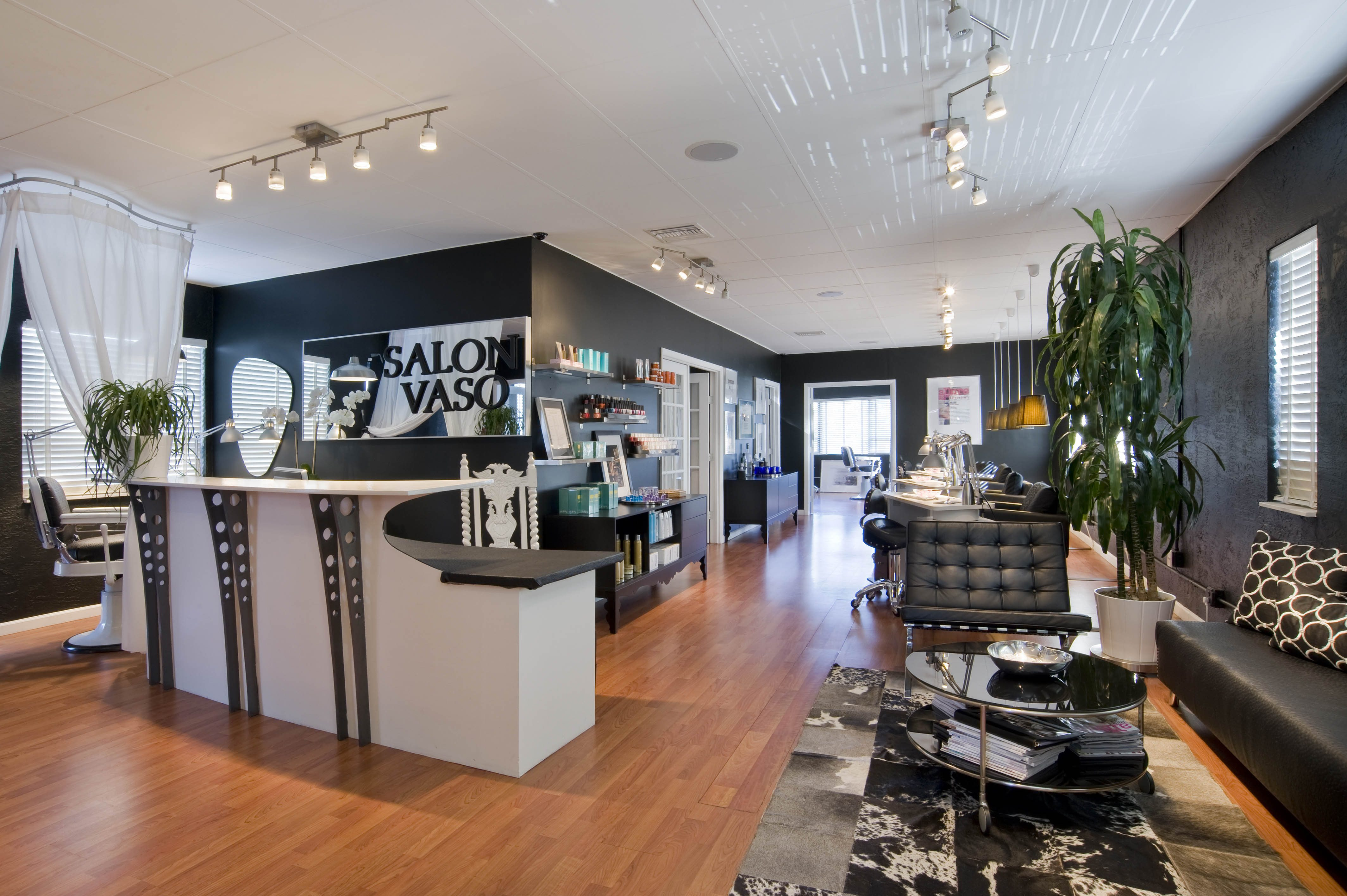 Salon vaso miami beach marketing pr case study for A cut above grooming salon